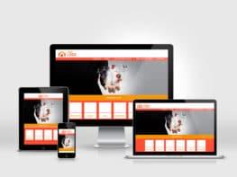 Création et réalisation de site internet en responsive