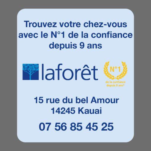 Mise en page du verso du modèle 01, verso 02, du désodorisant voiture proposé pour la franchise Laforêt. Trouvez votre chez vous.