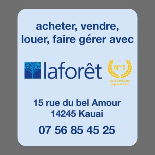 Mise en page du verso du modèle 01, verso 03, du désodorisant voiture proposé pour la franchise Laforêt. Acheter, vendre, faire gérer.